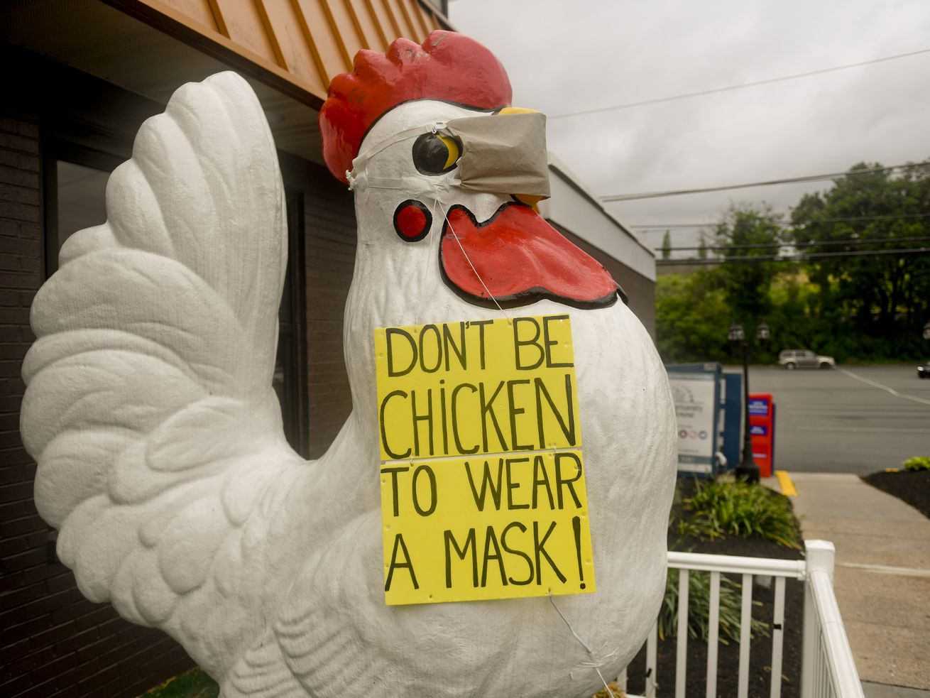 """A giant chicken statue outside a restaurant wears a face mask and a sign reading, """"Don't be chicken to wear a mask!"""""""