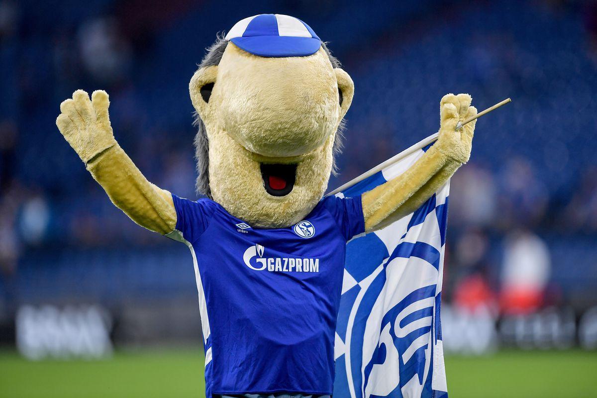 FC Schalke 04 v FC Erzgebirge Aue - Second Bundesliga