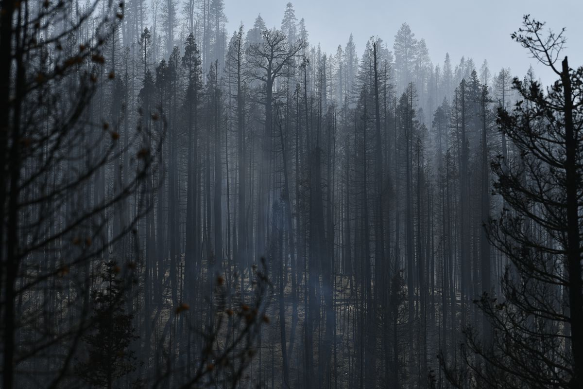 Bootleg Fire Continues To Burn Across Southern Oregon