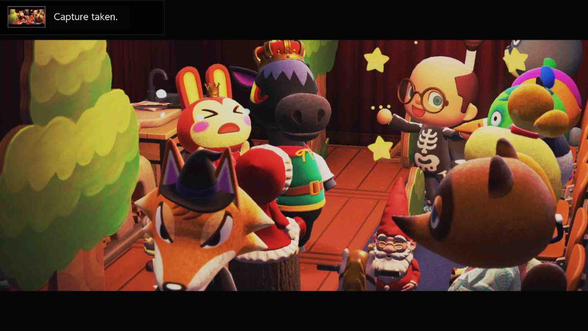 Screenshot from Animal Crossing: New Horizons on the Switch demonstrating Photopia.