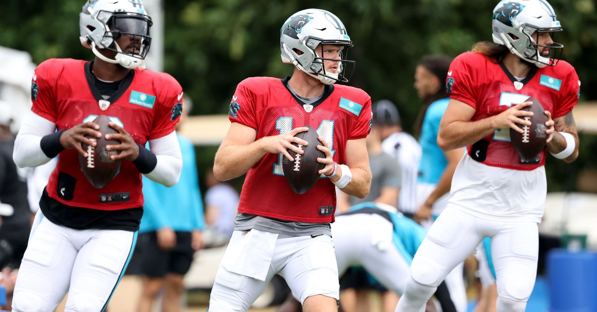 2021 NFL preseason: Which Ravens, Panthers players will play or not play in Week 2? - DraftKings Nation