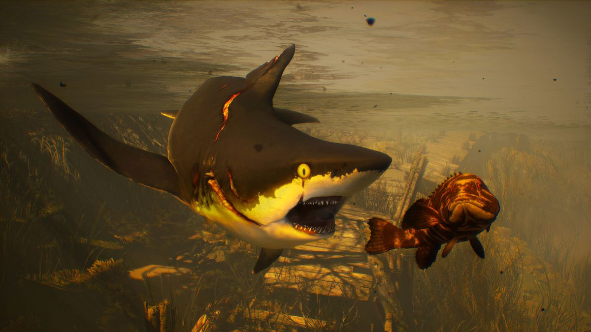 a wounded shark chasing a large fish in Maneater