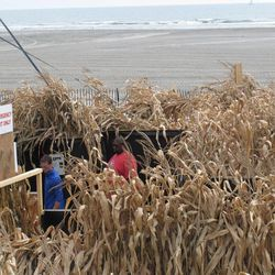 Employees work on a beachfront corn maze in Wildwood N.J. on Sept. 27, 2012. The boardwalk is adapting some of its summertime rides to a Halloween theme to try to extend the tourist season as long as possible.