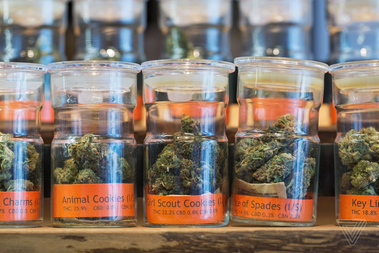 legalizing weed is the right move for new york the state s health department says