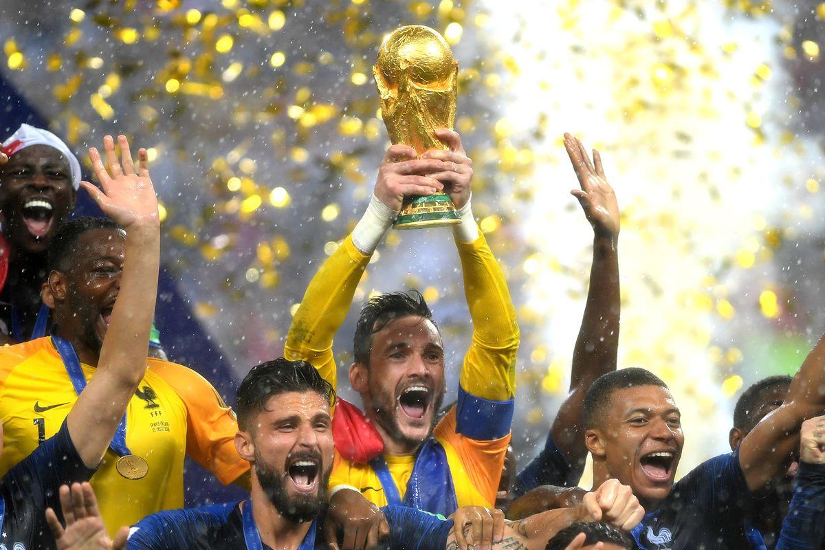 Image result for France's World Cup-winning Hugo Lloris