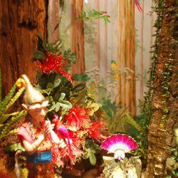 Cinnabar and the Ruby Rainforest