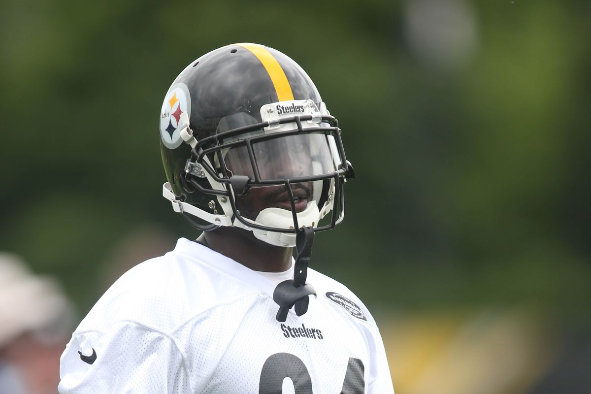 2fee4a558e1 Charles LeClaire-USA TODAY Sports. Steelers receiver Antonio Brown ...