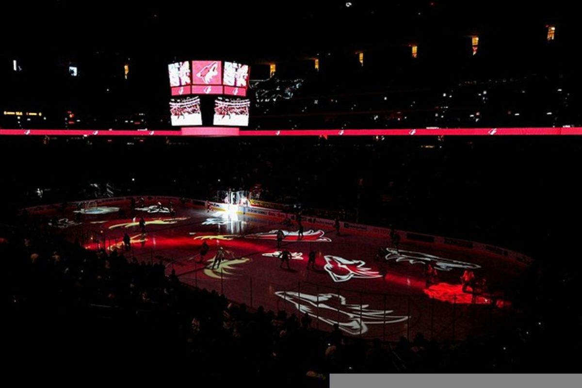 <strong>Mar 3., 2012; Glendale, AZ, USA; Phoenix Coyotes logos are projected onto the ice during warm ups before the game against  the Columbus Blue Jackets at Jobing.com Arena. Mandatory Credit: Matt Kartozian-US PRESSWIRE</strong>