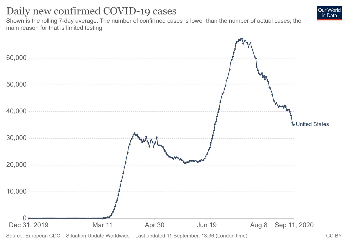 A chart of daily new US Covid-19 cases since the start of the pandemic.