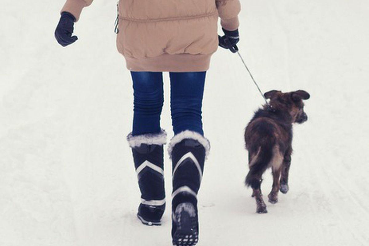 "Image via <a href=""http://www.shutterstock.com/pic-159188066/stock-photo-teenage-girl-walking-her-dog-on-snowy-winter-day.html?src=N84gZEyLl3gz9WwJOcjk1w-1-2"">prudkov</a>/Shutterstock"