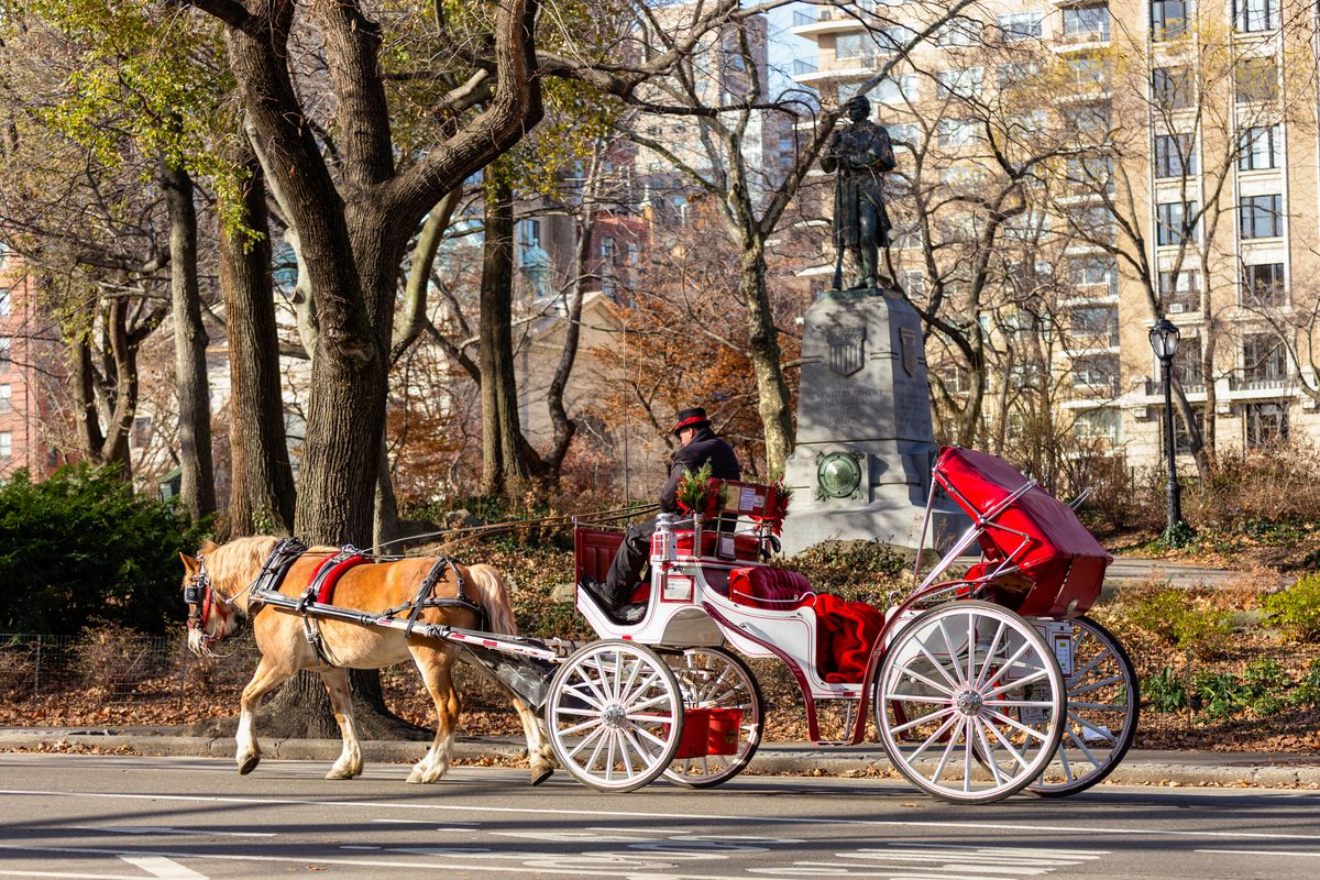 central park horse carriages could relocate under revived