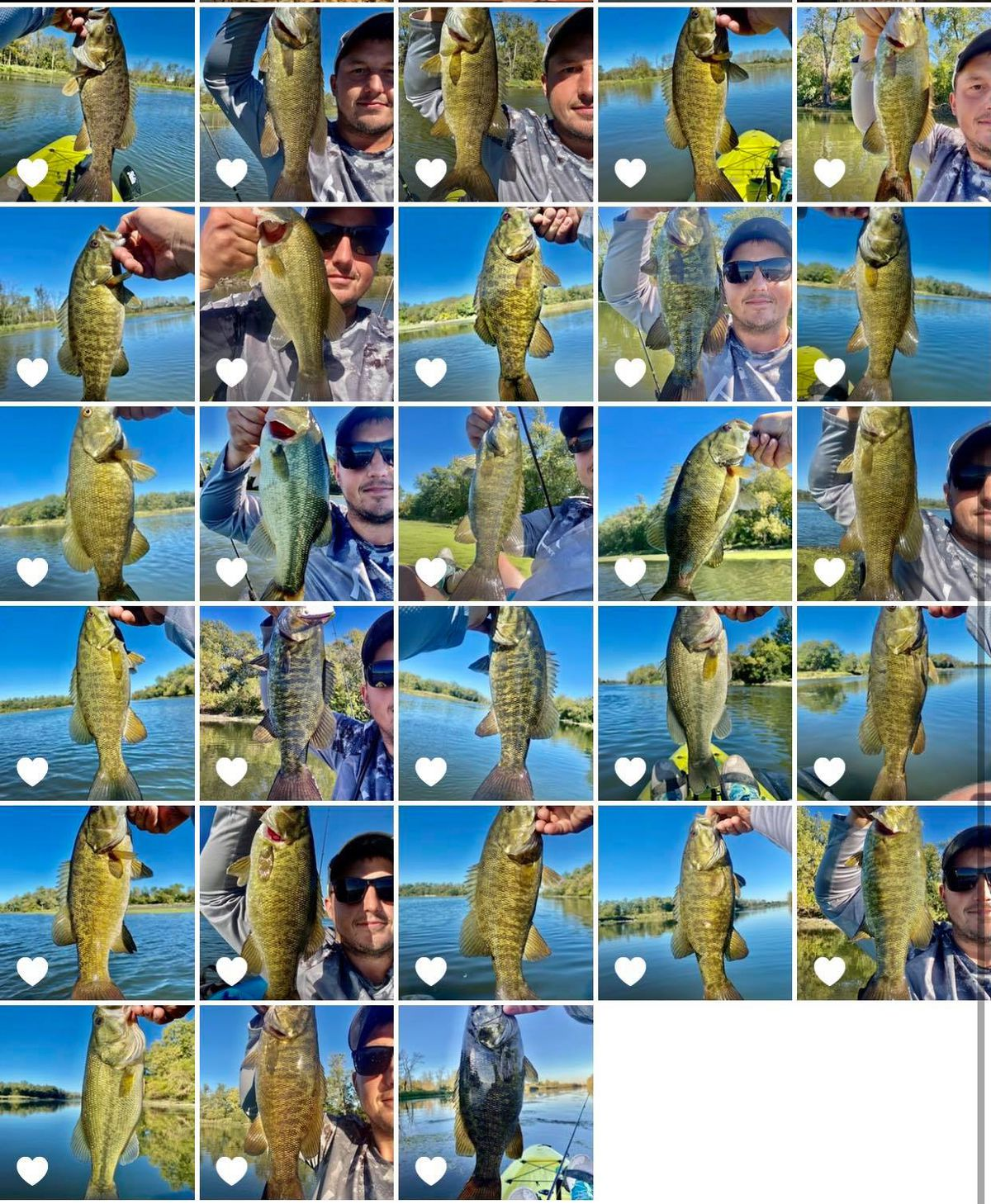 A collage of fall fishing on the Des Plaines River. Provided by Jonny Pitelka