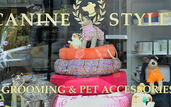 Canine Styles Has Been Styling The Canines Since 1959 First From Its Original Upper East Side Location And Now Three Other Stores Including This One