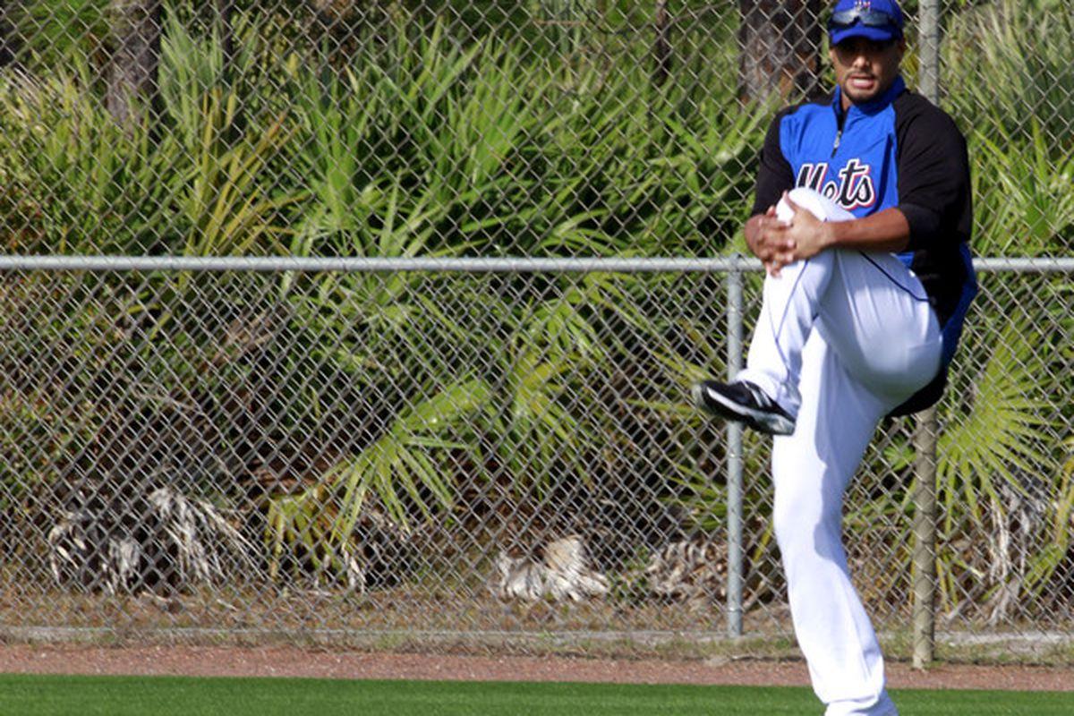 The New York Mets may shut down the rehabilitation of ace Johan Santana.  (Photo by Marc Serota/Getty Images)
