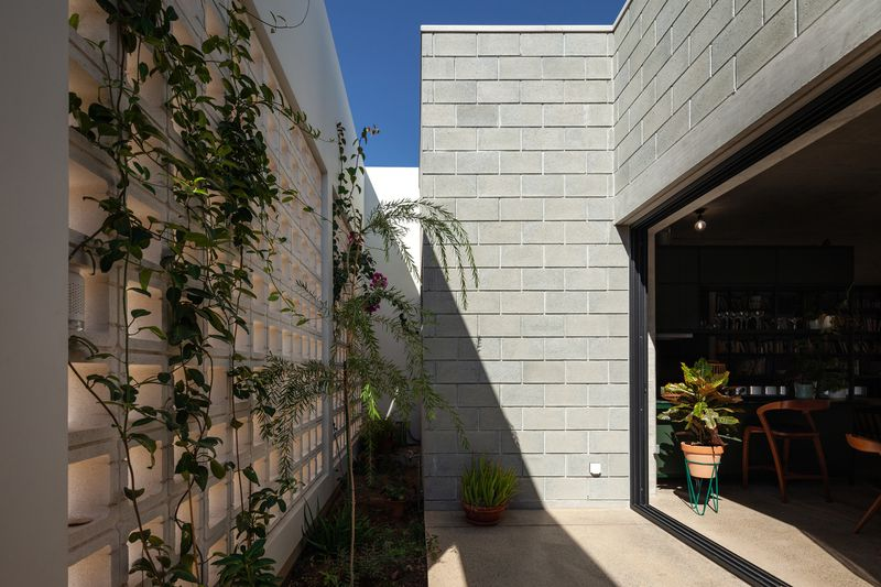 Outdoor area with large opening to the inside and vines growing on concrete walls.