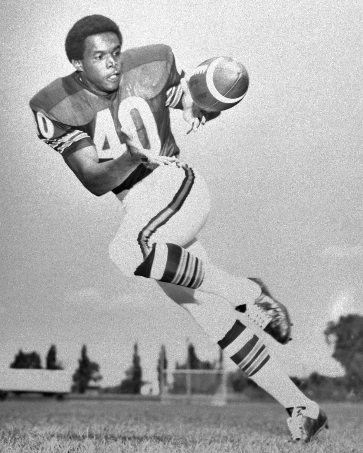 Gale Sayers of the Chicago Bears Making a Running Catch