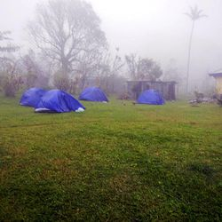 The tents of Dr. Matthew Cornish's team are buffeted by a minor storm.