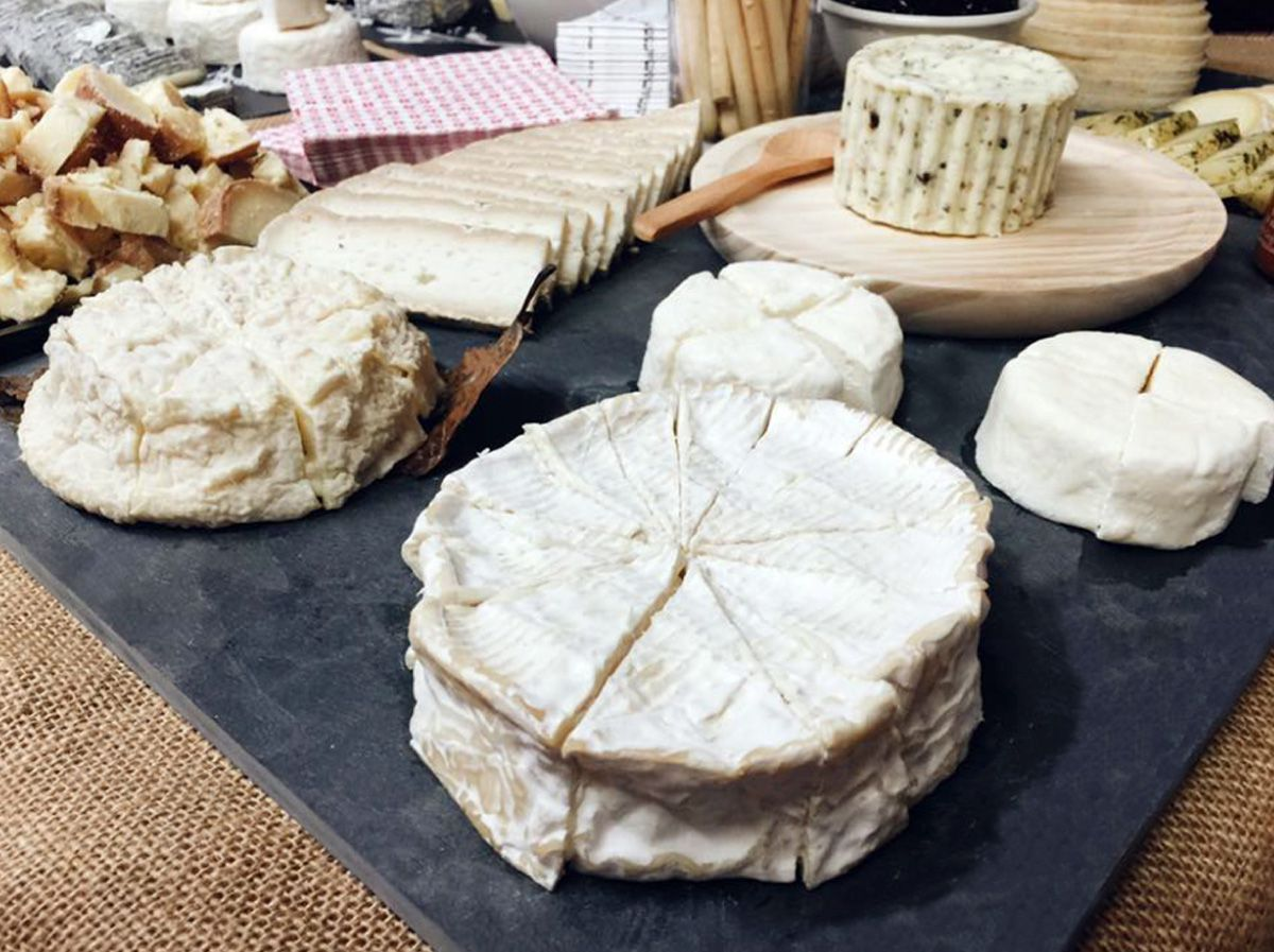 A board of different white cheese of various varieties, textures, and shapes.