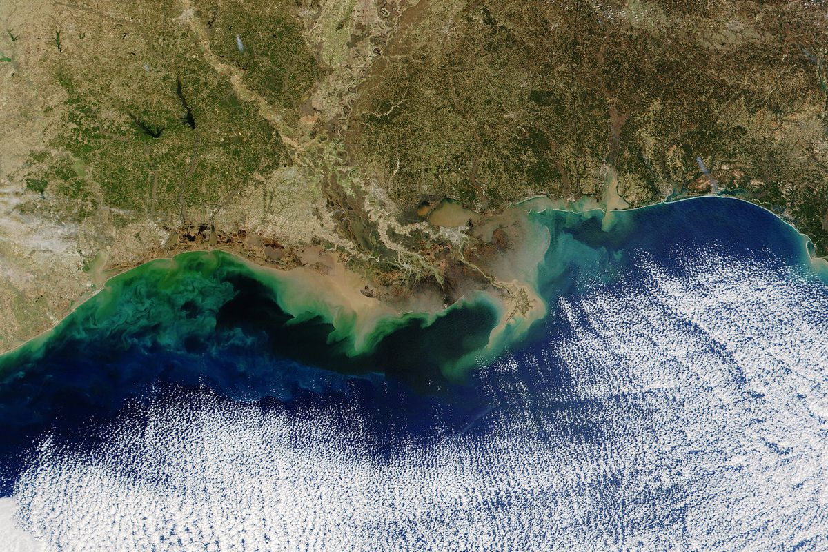 The Biggest Ever Quot Dead Zone Quot In The Gulf Of Mexico Is The