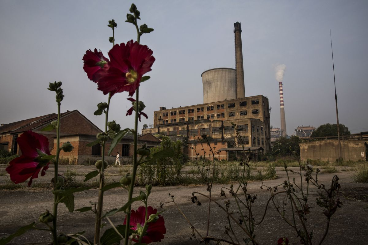 China Is Methodically Building The Worlds Most Ambitious Carbon