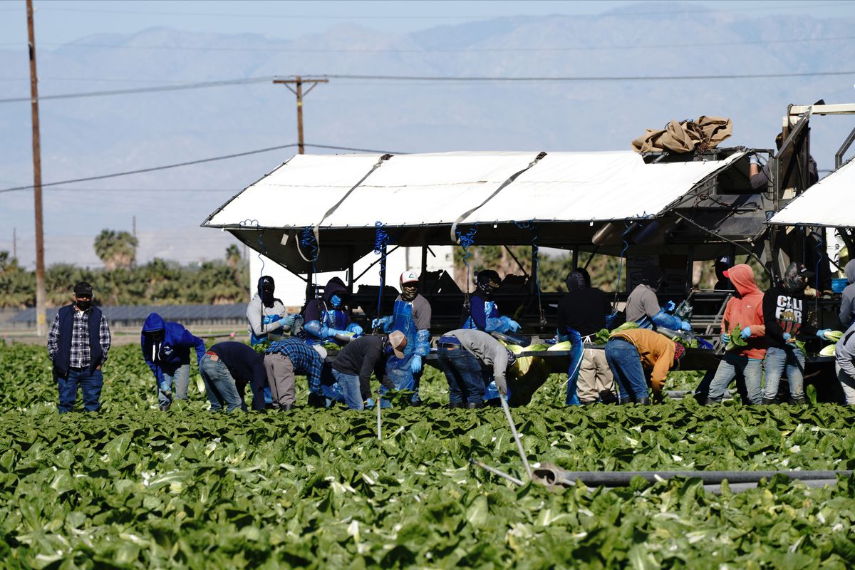 Farm Workers Receive Covid-19 Vaccinations