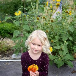 Lily Munson, 4, carefully holds the flowers that she picked for Salt Lake City Mayor Ralph Becker at the dedication of the Popperton Plots community garden in Salt Lake City on Friday, Aug. 22, 2014.