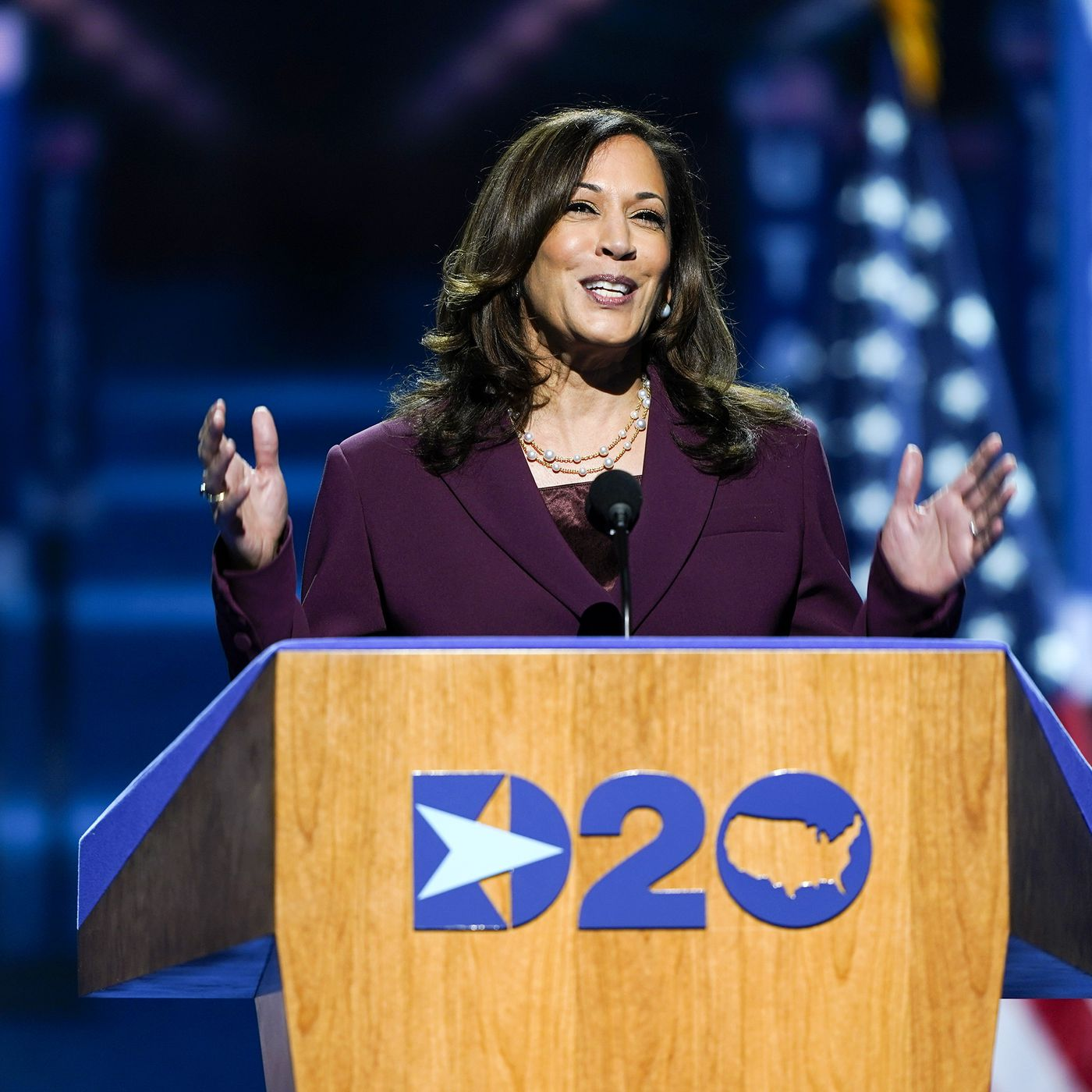 Kamala Harris Makes History As The First Black And South Asian American Woman And Hbcu Graduate To Accept The Democratic Vp Nomination Vox