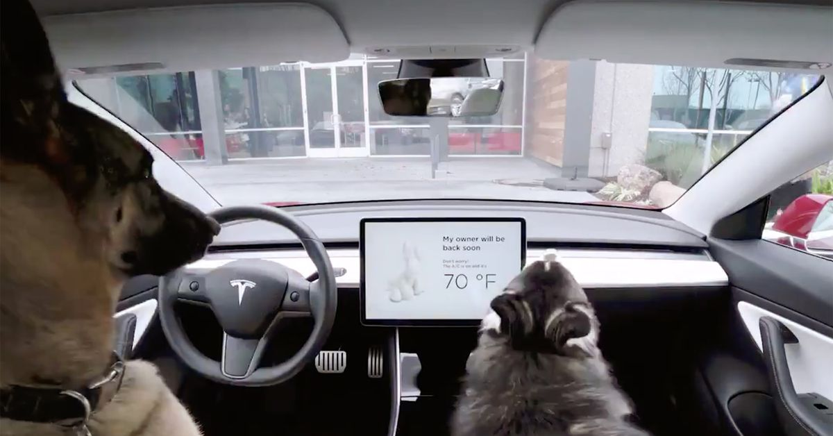 photo of Tesla's new Dog and Sentry modes take care even when you don't image