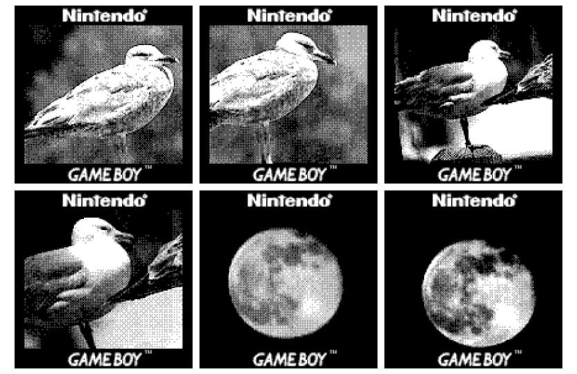 Photos taken with Game Boy Camera