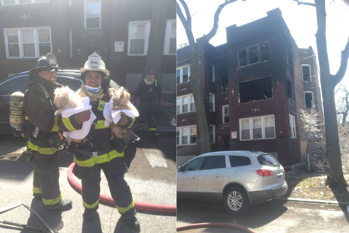 A boy was injured and two pets saved after a fire broke out April 1, 2021, in Grand Crossing.