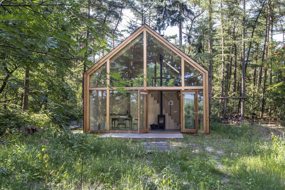 Timber cabin with pitched roof and glass walls surrounded by trees