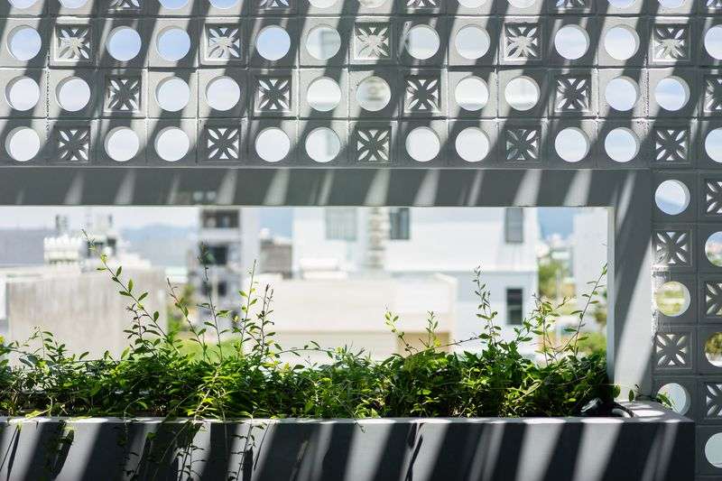 A close up of the white perforated facade, which features breeze blocks that are circles and flower shapes. A planter has green plants in it.
