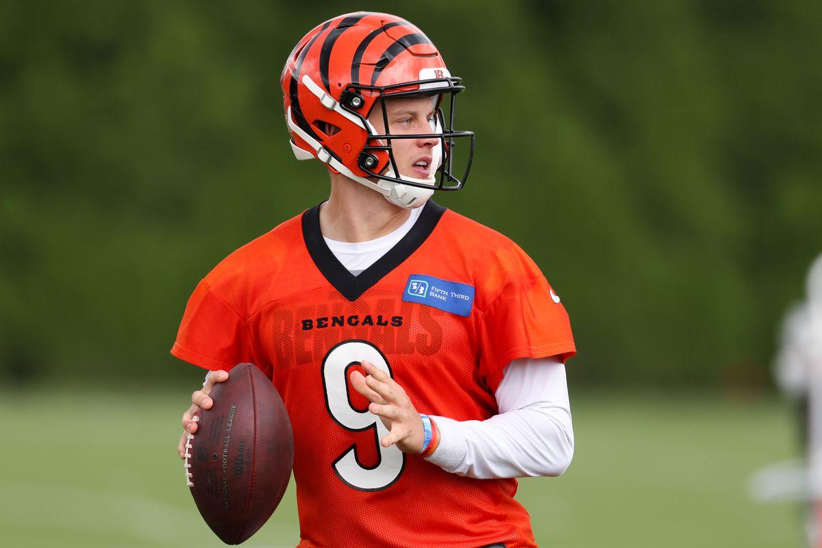 NFL: AUG 16 Cincinnati Bengals Training Camp