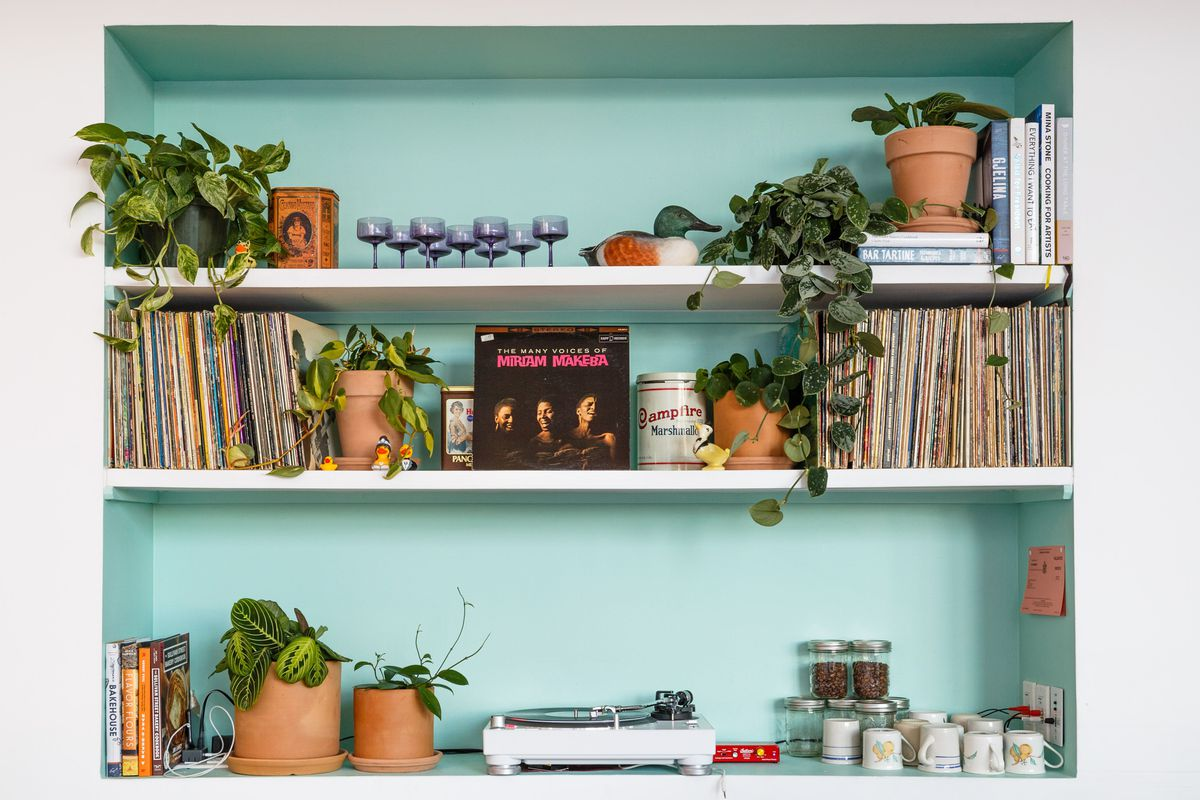 A three-tiered bookshelf with a pale blue background, plants, records, and a record player