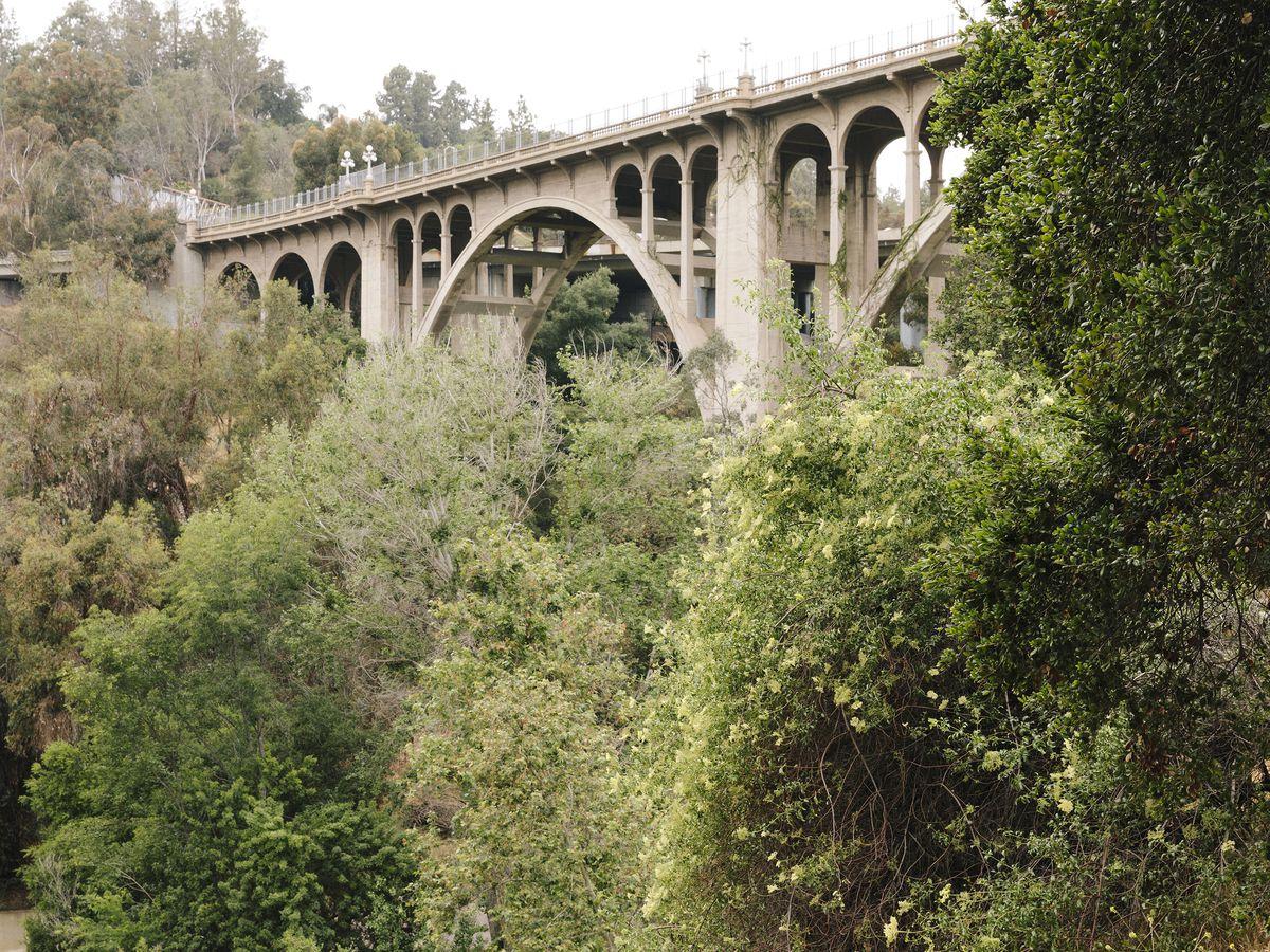 The Colorado Street Bridge. The bridge spans across an area with many tall trees.