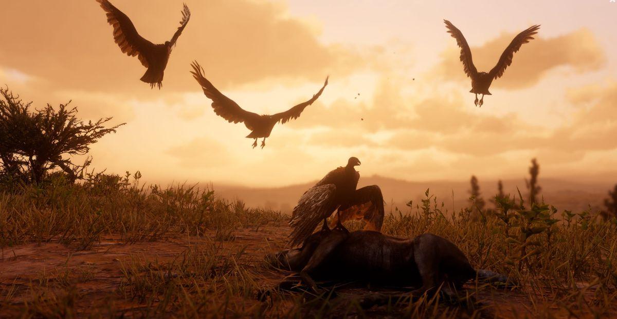 Birds flying Arthur Morgan at Red Dead Redemption 2