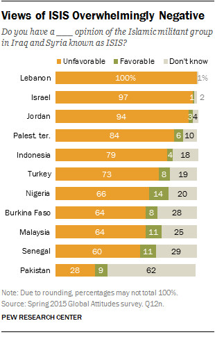 Countries with significant Muslim populations do not like ISIS.