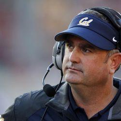 Cal head coach Sonny Dykes.