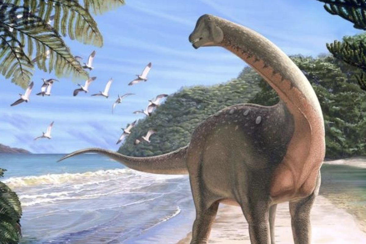 """Scientists recently discovered a new dinosaur in the Egyptian desert, """"shedding light on Africa's missing history of dinosaurs."""""""