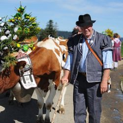 Brunette (the bovine) & Jean Claude Biver