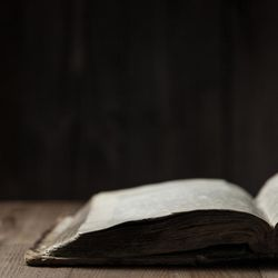 People focused on the Bible's messages of love, peace and comfort over the last 12 months, according to Bible Gateway.