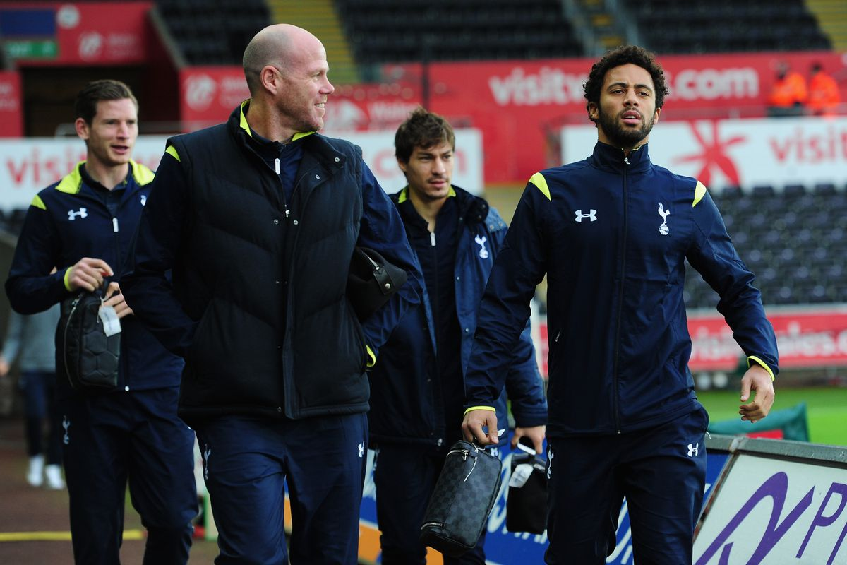 Swansea City v Tottenham Hotspur - Premier League
