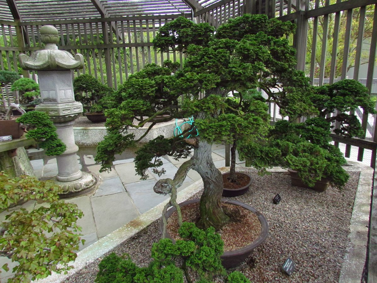 Small ornamental plants in pots amid statuary.