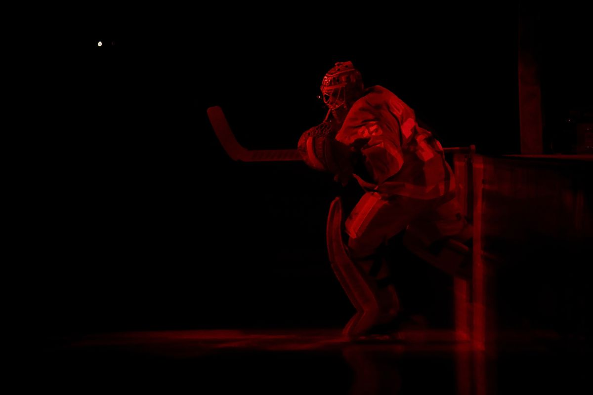 Red Wings vs Ducks: Rank 'EM!
