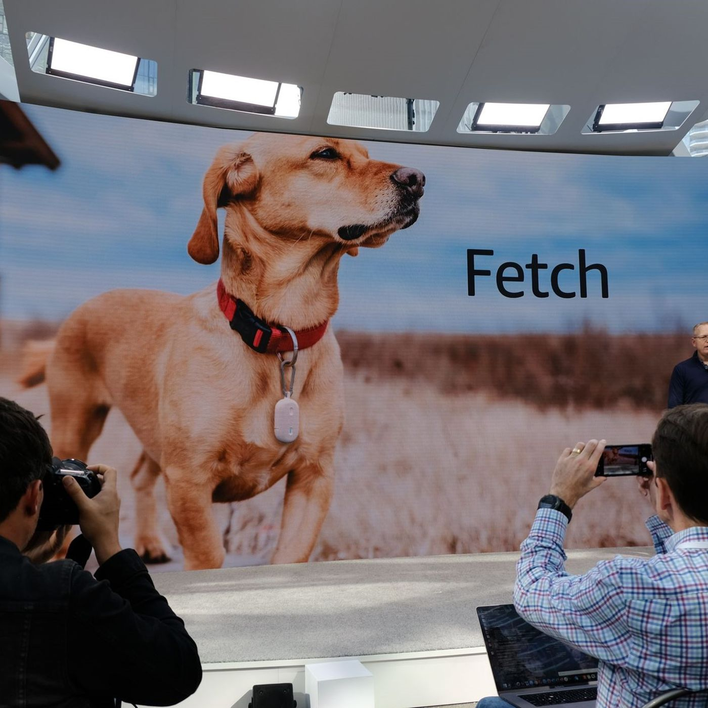 Image result for Ring Fetch