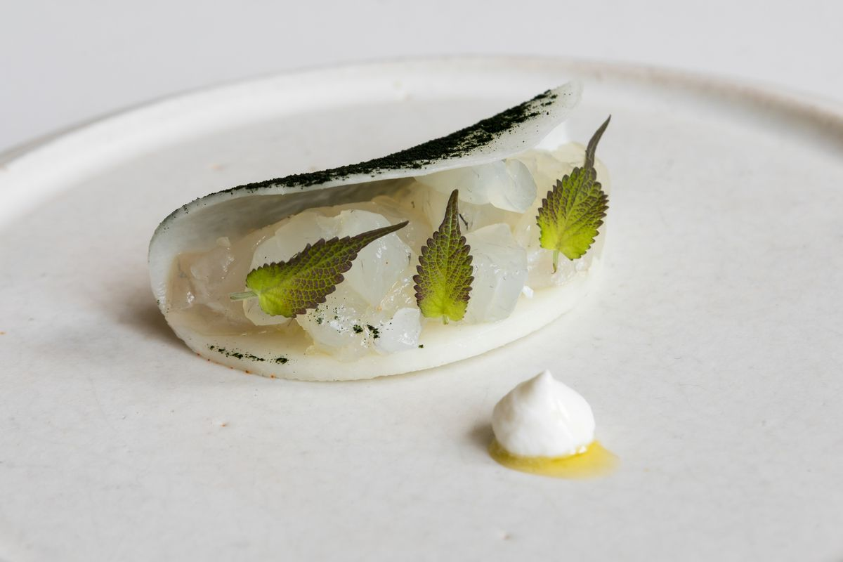 Raw fish starter from Le Fantastique