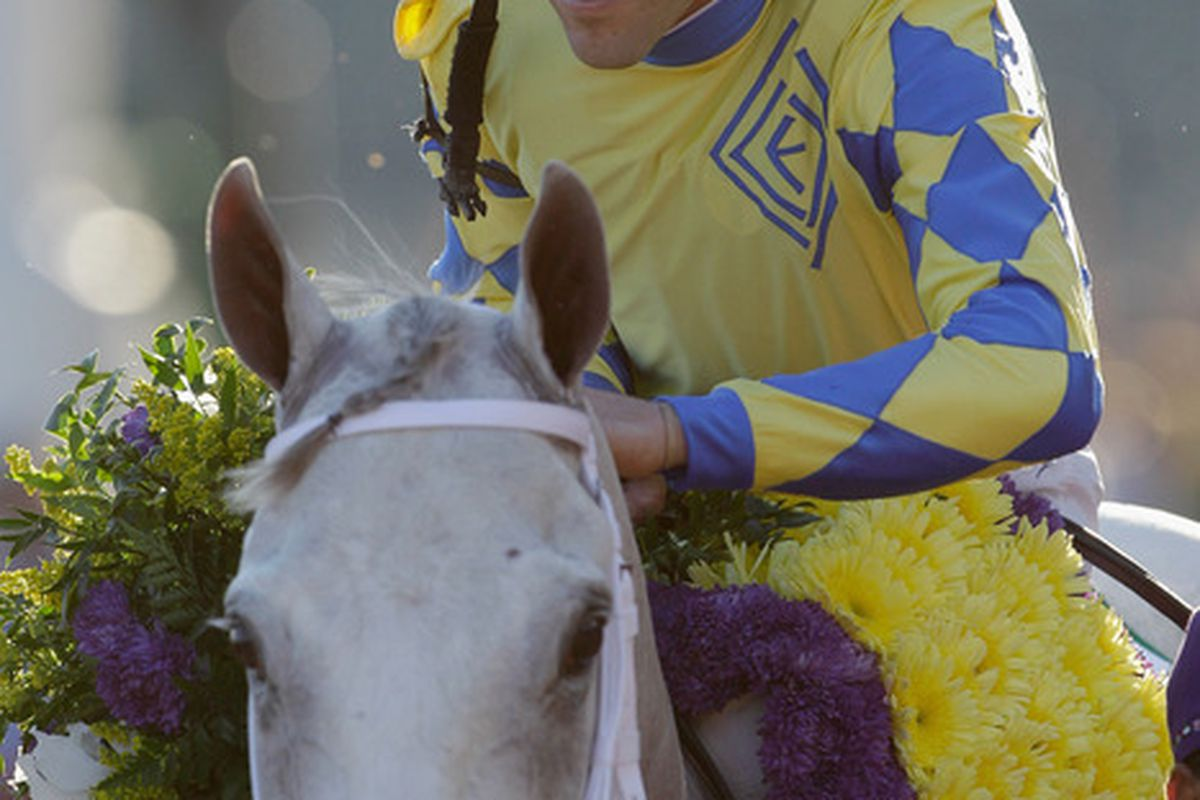 LOUISVILLE, KY - NOVEMBER 5th: Jockey Ramon Dominguez pats Hansen after winning the Breeders' Cup Juvenile during the 2011 Breeders' Cup World Championships at Churchill Downs in Louisville, Kentucky.  (Photo by Rob Carr/Getty Images)