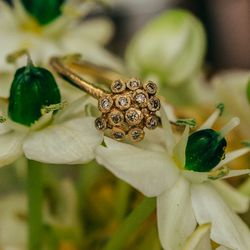 """A <a href=""""http://satomikawakita.com/collections/ring/products/r2609br"""">diamond cluster ring</a>, from $835"""