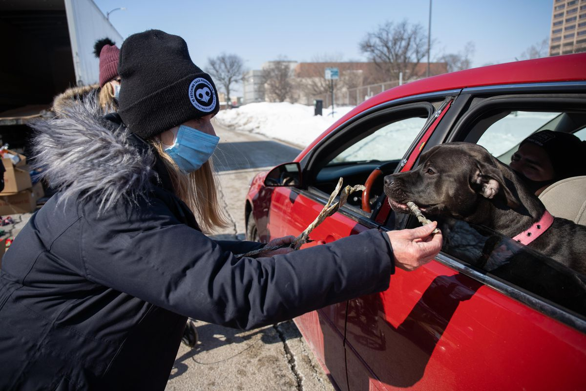 Linda Wyka, president of Fetching Tails Foundation, gives Gucci Rosé a treat during the Cook County Sheriff's Office's drive-up pet food pantry.