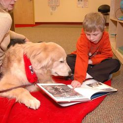 Joshua Rasmussen reads to Journey, with Journey's handler, Mary Domes. Domes and Journey participate in the READ program in Wisconsin.